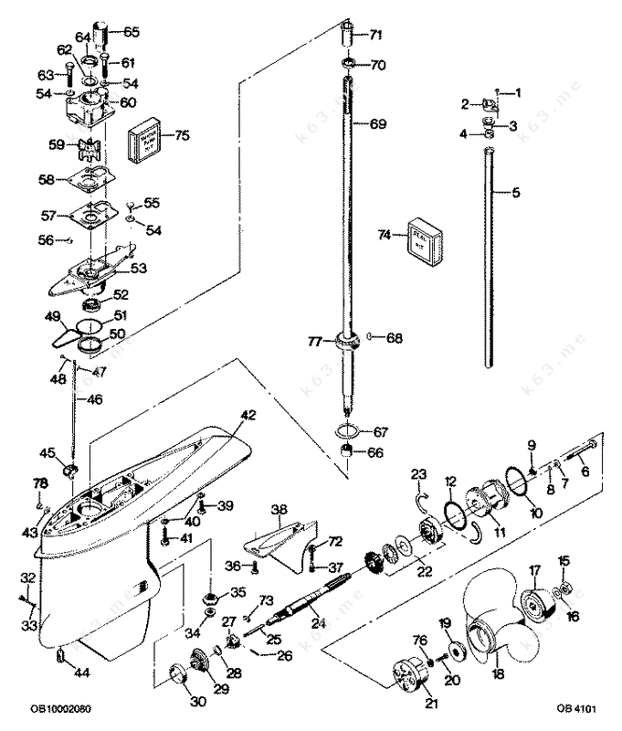 ford cooling system parts echo